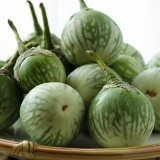 Vinete Thai green