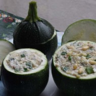 Dovlecel zucchini Piacenza Round Dark