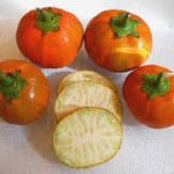 Vinete Turkish orange
