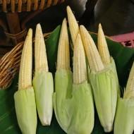 Porumb Baby Corn