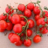 Tomate cherry Principe Borghese
