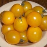Tomate cherry Cereza Amarilla