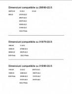 LANTURI TIP SCARITA CAMION 315/60-22.5