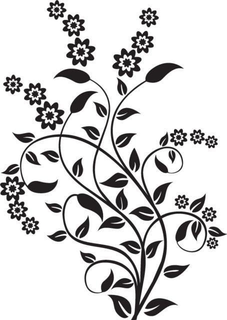 Flori de bucatarie