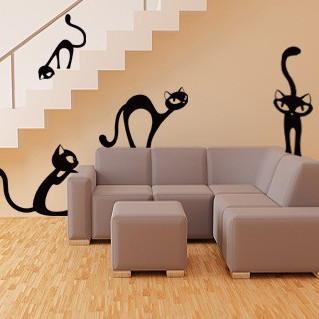 Set 4 pisici