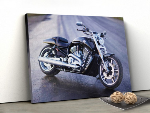 Tablou canvas - Cool Moto