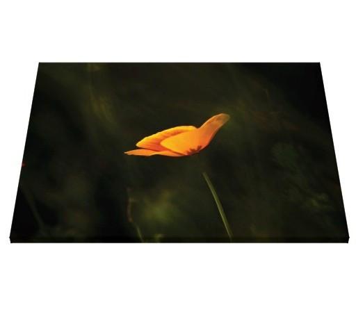 Tablou canvas - flori 04