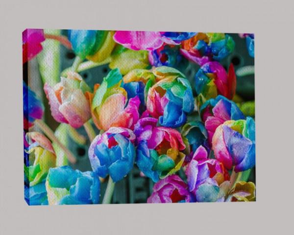 Tabloul Canvas Efect Pictura Lalele Multicolore