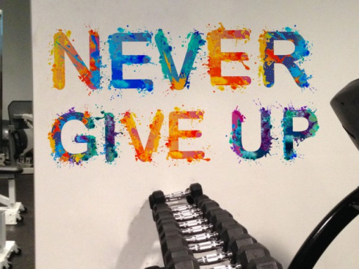 Poze Never Give Up