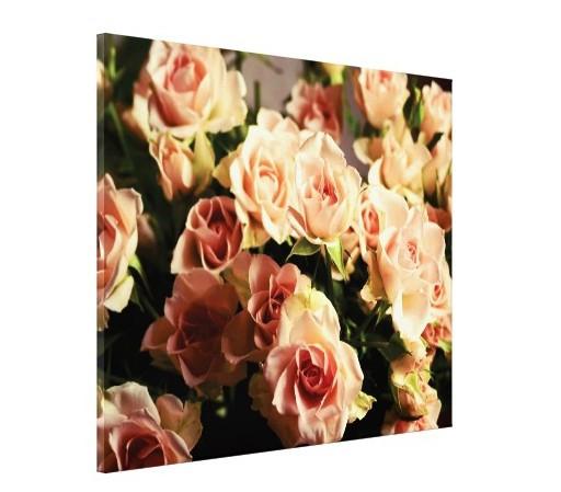 Tablou canvas - trandafiri roz 01