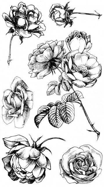 Tatuaj temporar - trandafiri desenati - 17x10cm