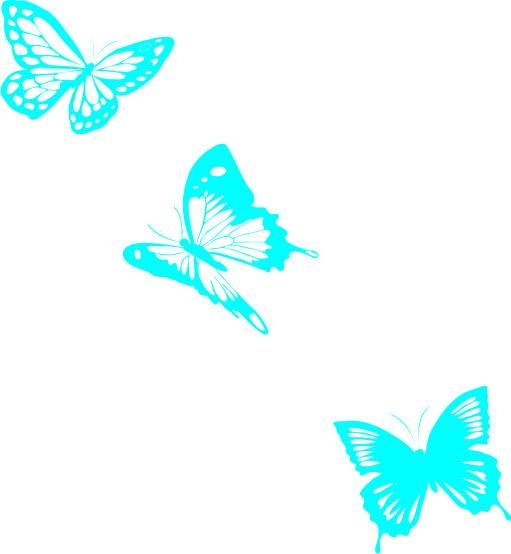 3 fluturi