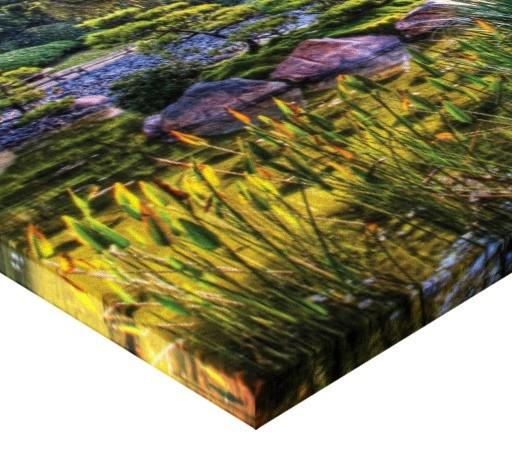 Tablou canvas - parc natural
