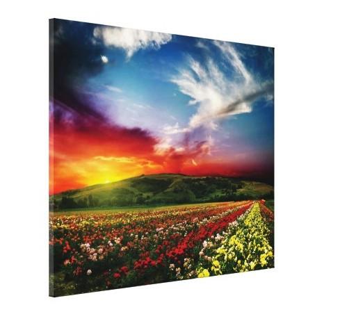 Tablou canvas - lan de flori