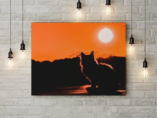 Tablou Canvas Silueta de pisica