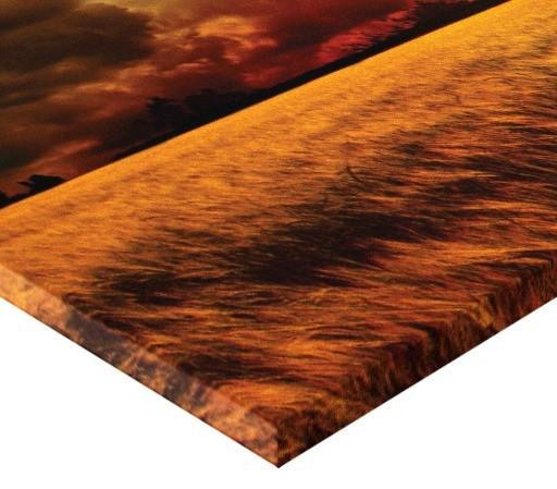 Tablou canvas - lan de grau 02