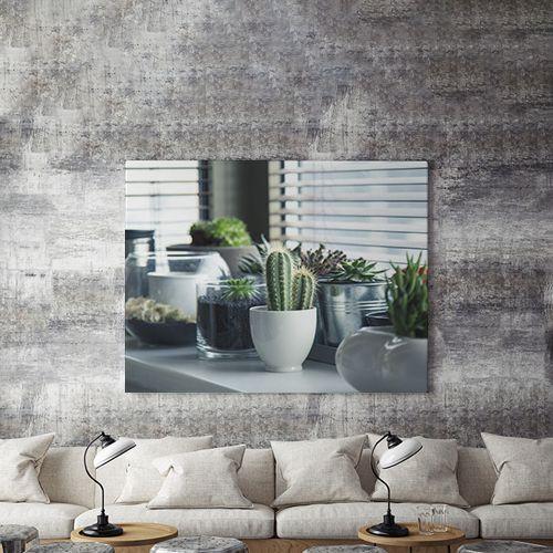 Tablou Canvas Plante de apartament