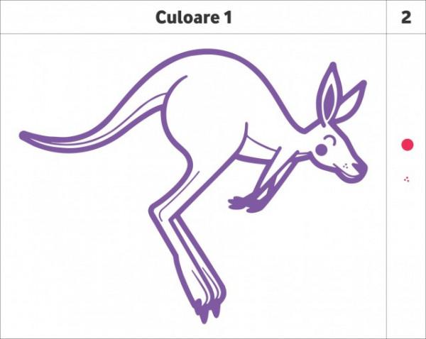 Cangur (in doua culori)