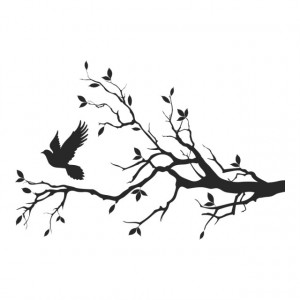 Dove Tree Branch
