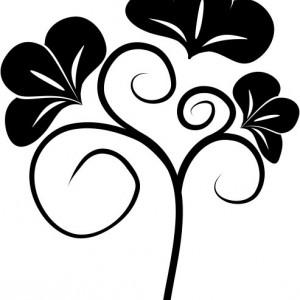 Floare noua