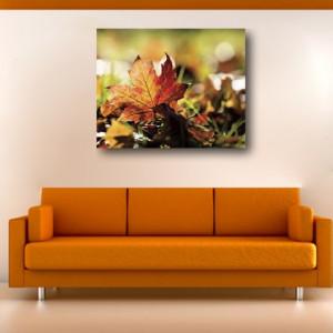Tablou canvas - frunza stejar