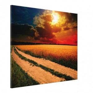 Tablou Canvas - Lan De Grau 01