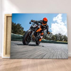Tablou canvas - Speed