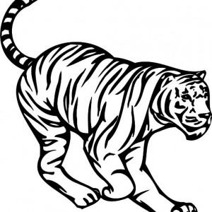 Tigru 2