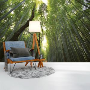 Foto tapet Tall trees