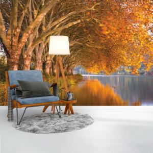 Foto tapet Trees along the lake