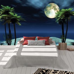 Foto tapet Luna si palmieri