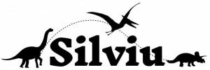 Sticker cu nume - Silviu
