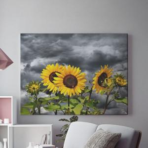 Tablou Canvas Floarea soarelui in furtuna