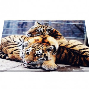 Tablou canvas - pui de tigru