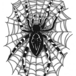 Tatuaj temporar -Spider- 17x10cm