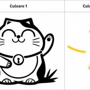 Pisica norocoasa (in doua culori)