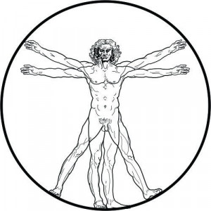 Sticker De Perete Omul Vitruvian