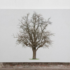 Tablou Canvas Finger Tree Ares
