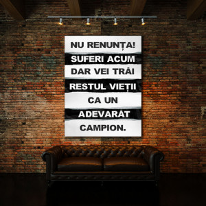 Tablou motivational - Nu renunta acum