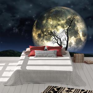 Foto tapet Silueta de copac in lumina lunii