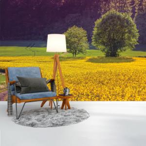 Foto tapet Yellow fields