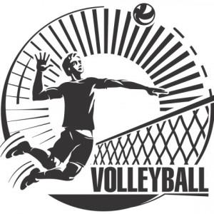 Sticker De Perete Voleyball