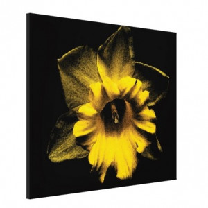Tablou canvas - floare 04