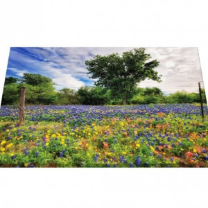 Tablou Canvas - Pajiste Cu Flori