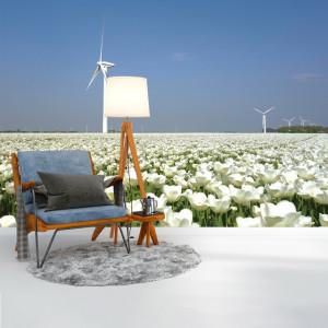 Foto tapet White tulips