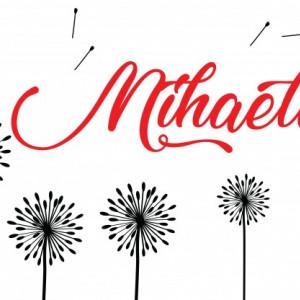 Sticker De Perete Cu Nume - Mihaela 2