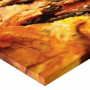 Tablou canvas - castana