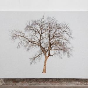 Tablou Canvas Finger Tree Hera