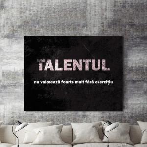 Tablou motivational - Talentul nu valoreaza foarte mult