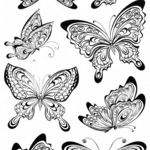 Tatuaj temporar -Fluturasi- 17x10cm
